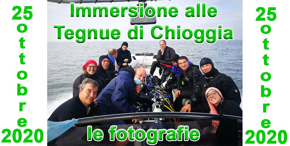25/10/2020 Le fotografie dell'immersione alle Tegnue di Chioggia